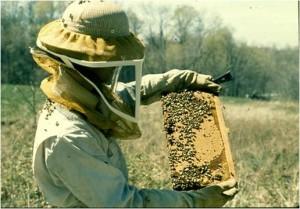 BeekeeperWithFrame